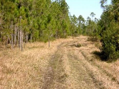 Crooked Lake Development : Lake Wales : Polk County : Florida