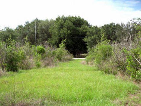 Gandy Road Investment : Bartow : Polk County : Florida