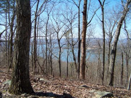 5acres Overlooking Nick-a-jack Lake : New Hope : Marion County : Tennessee