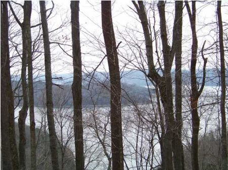 Foreclosure 49+/- Acres Lake View : Lancaster : DeKalb County : Tennessee