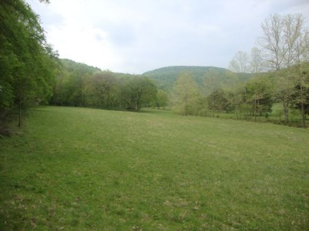 Owner Financing 500 Acres : Paint Rock Valley : Jackson County : Alabama