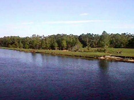 Kissimmee River Property : Lake Wales : Osceola County : Florida
