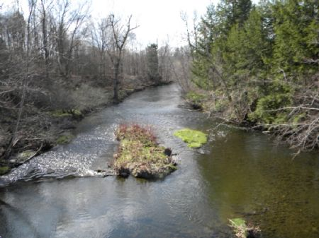 10+ Ac Creek Frontage Finger Lakes : Dryden : Tompkins County : New York