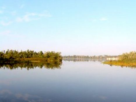 Lake Pierce Estate & Lakefront Dev : Haines City : Polk County : Florida
