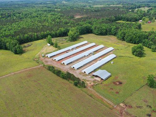 Georgia Land for Sale, 10 - 50 Acres : LANDFLIP