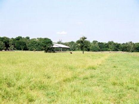 Polo Club Lane - 17.1 Acres : Lithia : Hillsborough County : Florida