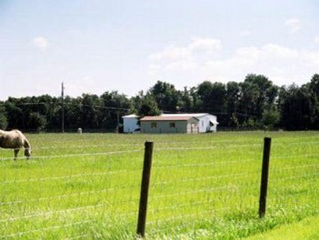 Powerline - Fishawk - 5 Acres : Lithia : Hillsborough County : Florida