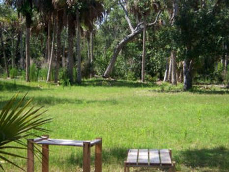Sand Dollar Ranch : Kenansville : Brevard County : Florida