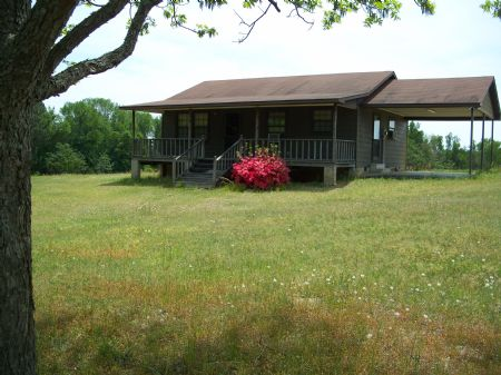 Approx. 78 Acres W/cabin Farmland : Vienna : Dooly County : Georgia
