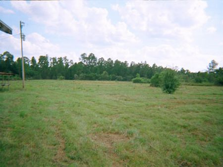 South Clermont Property : Clermont : Lake County : Florida