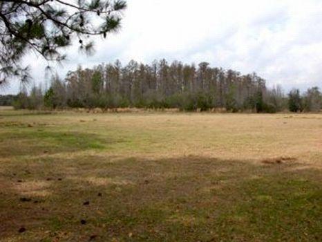 Cherokee Ranch : Polk City : Polk County : Florida