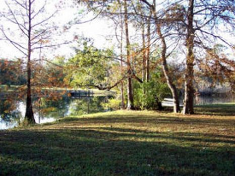 Suwannee River Hideaway : Old Town : Dixie County : Florida