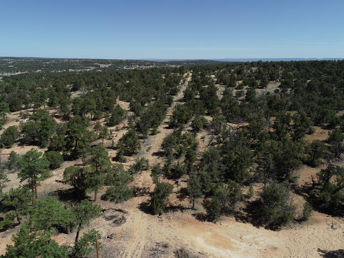13 Ac In The Candy Kitchen Of Nm Land For Sale By Owner In Ramah Cibola County New Mexico 282440 Landflip