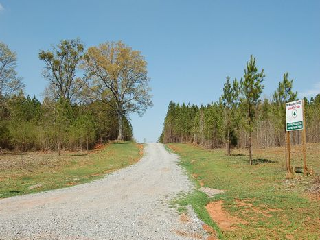 46 Acres Near Gray : Gray : Jones County : Georgia