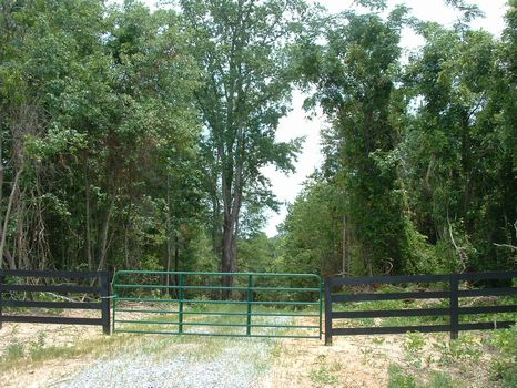 253 Acres : Roberta : Crawford County : Georgia