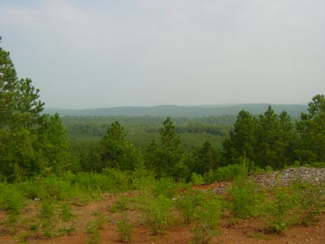290 ac with Fantastic Views : Canton : Cherokee County : Georgia