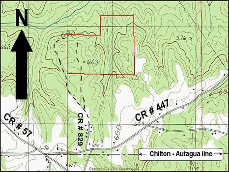 98 ac Investment Quality Timberland : Clanton : Chilton County : Alabama