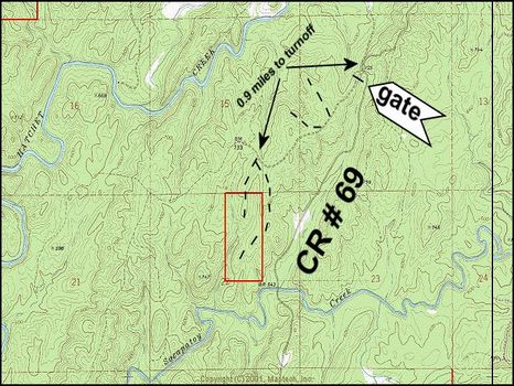 83 ac Investment Quality Timberland : Rockford : Coosa County : Alabama