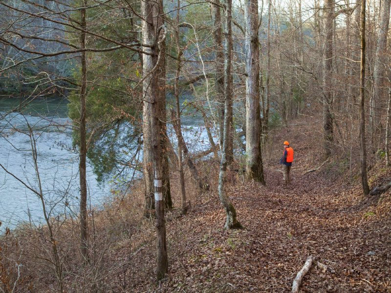 80 ac Beauty on Cahaba River : Montevallo : Shelby County : Alabama