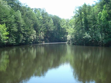 33 ac Beautiful Lake-Side Home Site : Columbiana : Shelby County : Alabama
