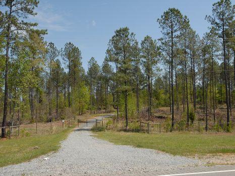 408 Acres on 4-Lane Highway : Thomaston : Upson County : Georgia