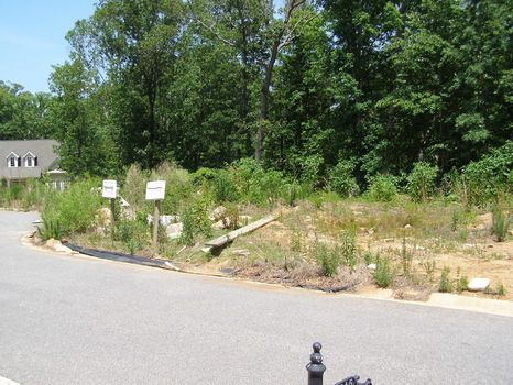 Builder Close-Out Lot in Cumming : Cumming : Forsyth County : Georgia