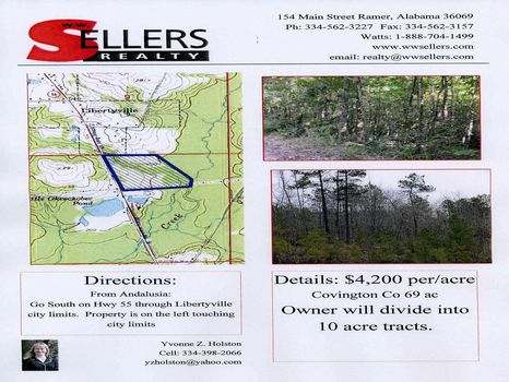 69 Wooded ac near Libertyville : Libertyville : Covington County : Alabama