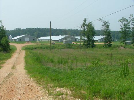 105 Acre Broiler Farm : Pisgah : Jackson County : Alabama