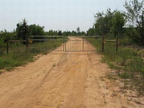 42 Prime Hunting/Farm Acres : Sandersville : Washington County : Georgia