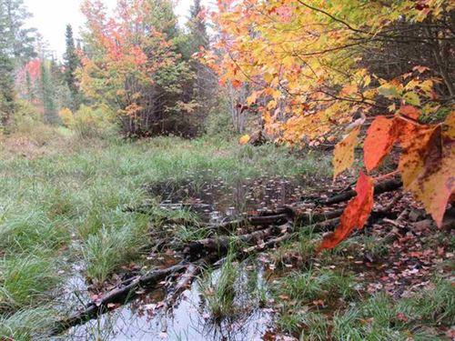 S Off Nestoria Rd 1053271 : Three Lakes : Baraga County : Michigan