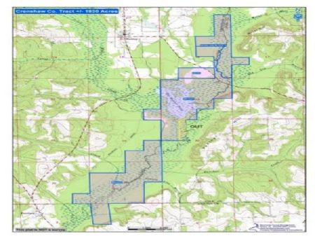 Timber Investment & Recreational : Petrey : Crenshaw County : Alabama