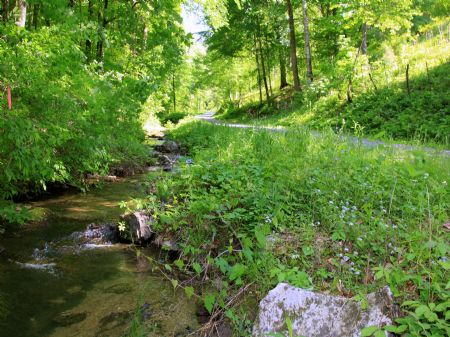 Owner Financed Land With Creek : Gibson Station : Lee County : Virginia