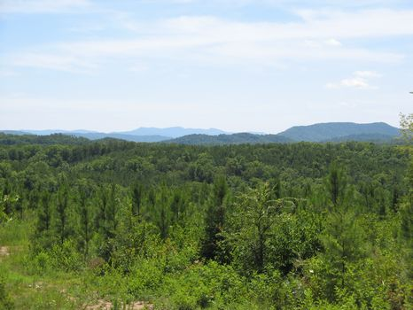 274 Acres : Vonore : Monroe County : Tennessee