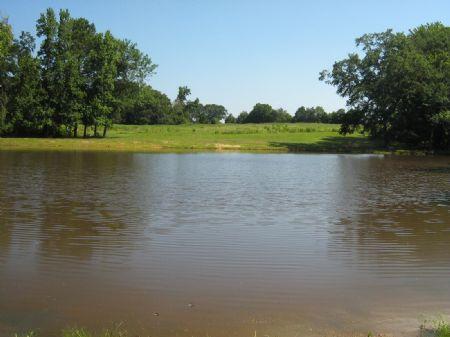 Home & 26 Acres With Pasture : Crawford : Oglethorpe County : Georgia