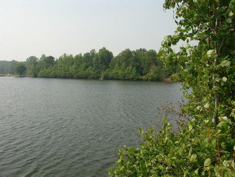 90 Acres Development or Homesite : Eclectic : Elmore County : Alabama