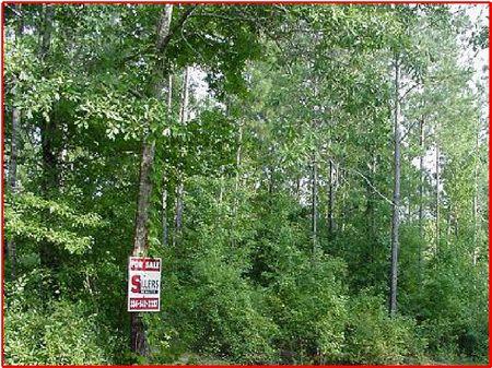 39.96 Wooded Ac Near Clanton : Clanton : Chilton County : Alabama