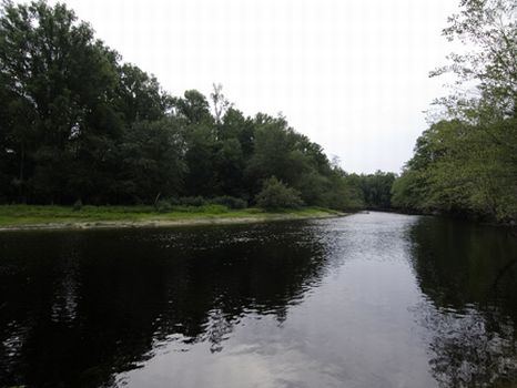 Rare 8,290 Acres on Scenic River : Nichols : Dillon County : South Carolina