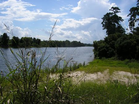 78  Acres, San Jacinto River Front : Houston : Harris County : Texas
