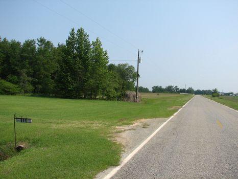 Augusta Area-155 Acres : Waynesboro : Burke County : Georgia