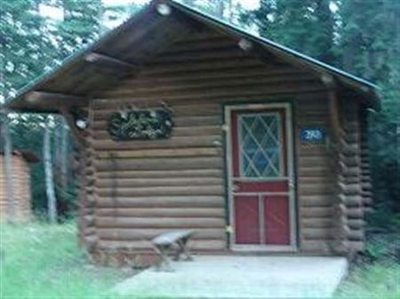 393 Robinson Lake Road Mls #1051540 : Iron River : Iron County : Michigan