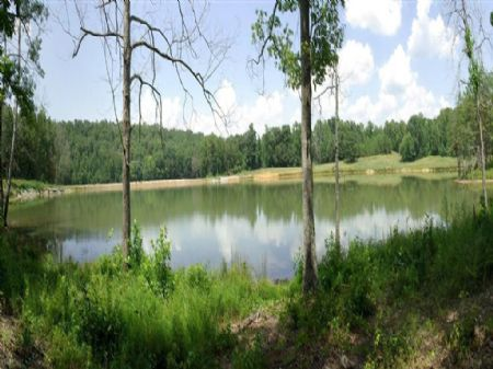 Eight Point -5+/- Acre Lake/141 Ac : Blountsville : Blount County : Alabama