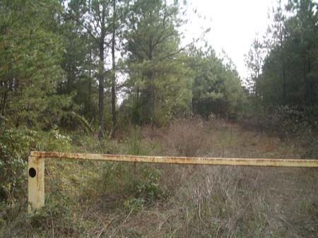 81 Ac - Culp Lake Rd - R81196g : Cedartown : Polk County : Georgia