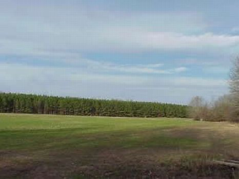 1213 Acres on The Big Black River : Durant : Attala County : Mississippi
