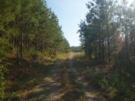 Clear Springs : Calhoun : McMinn County : Tennessee