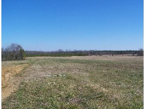 440 Acs Farm Land, Pasture & Pine : Vardaman : Calhoun County : Mississippi