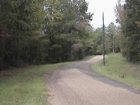 20 Acres Excellent Hunting & Timber : Haxlehurst : Copiah County : Mississippi