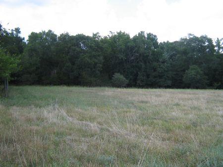 25 Acre Cattle Or Horse Farm : Lexington : Oglethorpe County : Georgia