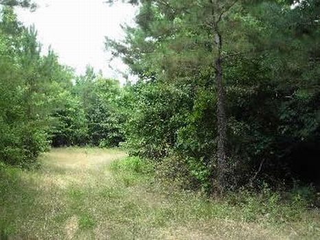 293 Acres : Edwards : Hinds County : Mississippi