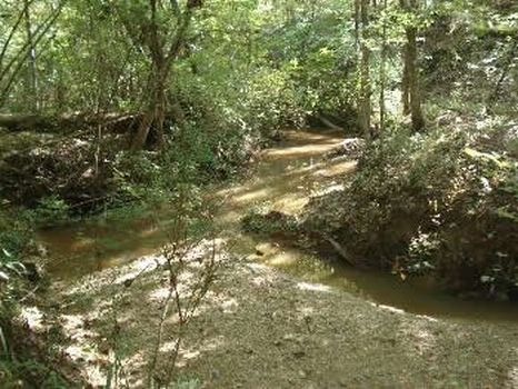 40 Acres - Homochitto Natl Forest : Union Church : Jefferson County : Mississippi