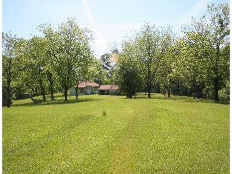 1550 sft Camp/House w/ 33 Wooded Ac : Union Church : Jefferson County : Mississippi
